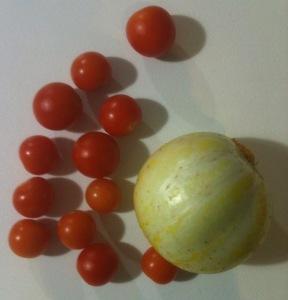lemon cucumber and cherry tomatoes